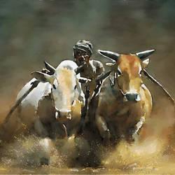 Village Bull Race - 30x23