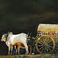 Bull cart with a man - 32x20