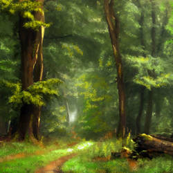 Forest in light - 40x26