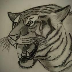 Sketch - 5x6