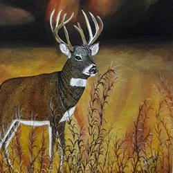 Deer in the forest - 12x19