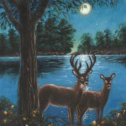 The Deer Couple in the Moonlight - 12x16