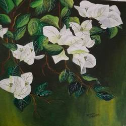 White Bougainvillea - 13x16