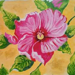The hibiscus flower - 15.5x10