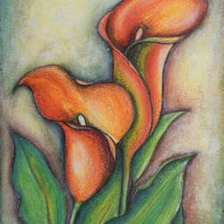 Calla Lilies - 8x12