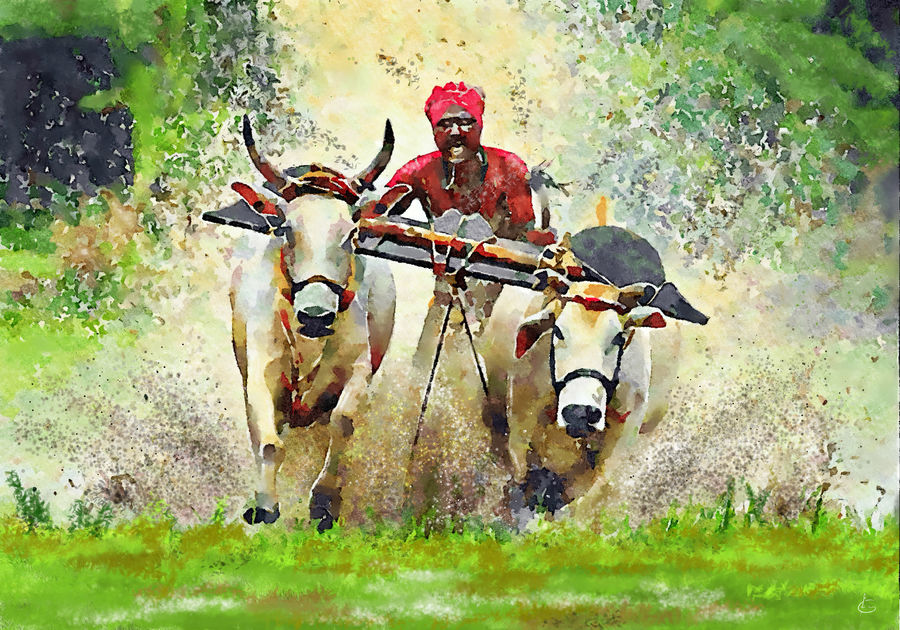 bull cart race, 30 x 21 inch, girinath goukulavasan,30x21inch,canvas,folk art paintings,landscape paintings,religious paintings,still life paintings,nature paintings | scenery paintings,animal paintings,realistic paintings,paintings for dining room,paintings for living room,paintings for bedroom,paintings for office,paintings for bathroom,paintings for kids room,paintings for hotel,paintings for kitchen,paintings for schools & colleges,paintings for hospital,paintings for dining room,paintings for living room,paintings for bedroom,paintings for office,paintings for bathroom,paintings for kids room,paintings for hotel,paintings for kitchen,paintings for schools & colleges,paintings for hospital,acrylic color,watercolor,digital print,ADR20105030733
