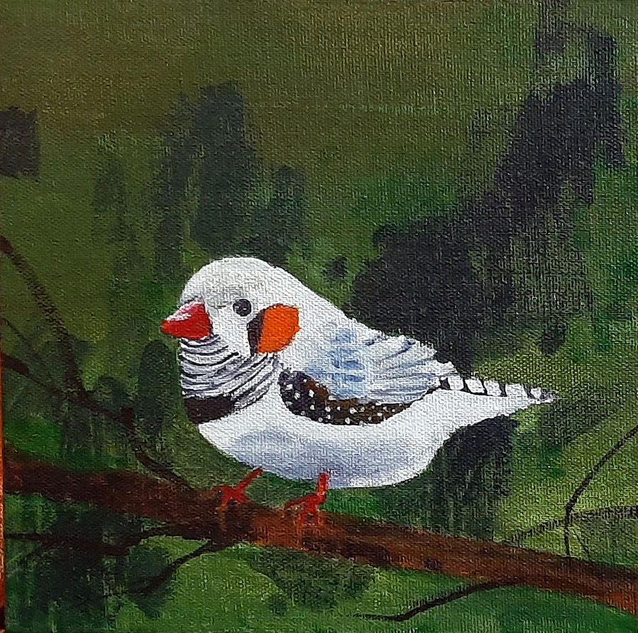 cute white bird, 8 x 8 inch, tejal bhagat,8x8inch,canvas board,paintings,wildlife paintings,flower paintings,nature paintings | scenery paintings,expressionism paintings,impressionist paintings,photorealism paintings,photorealism,realism paintings,surrealism paintings,animal paintings,contemporary paintings,realistic paintings,love paintings,children paintings,paintings for dining room,paintings for living room,paintings for bedroom,paintings for office,paintings for bathroom,paintings for kids room,paintings for hotel,paintings for kitchen,paintings for schools & colleges,paintings for hospital,acrylic color,ADR21262030794