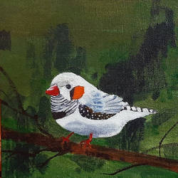 Cute White Bird - 8x8