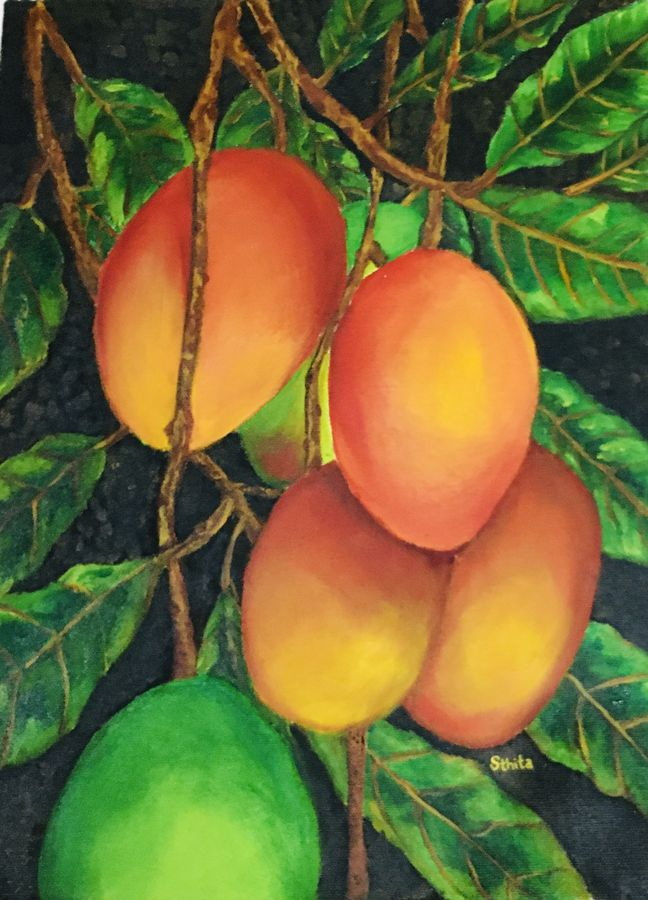 mangoes ( pic courtesy pininterest), 12 x 17 inch, sthita nayak,12x17inch,canvas,paintings,still life paintings,impressionist paintings,realistic paintings,paintings for dining room,paintings for office,paintings for kids room,paintings for hotel,paintings for kitchen,paintings for hospital,paintings for dining room,paintings for office,paintings for kids room,paintings for hotel,paintings for kitchen,paintings for hospital,acrylic color,oil color,ADR21371030872