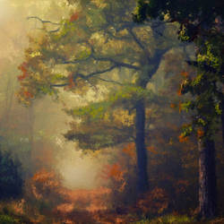 Autumn Forest in Morning Mist - 28x20