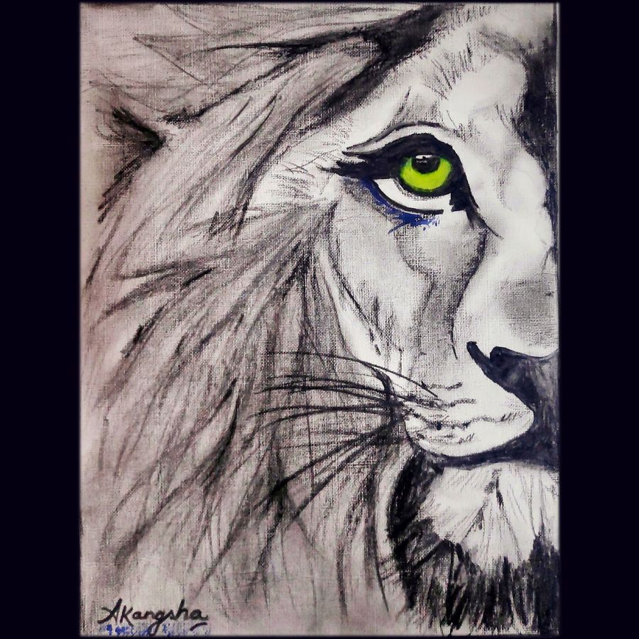 lion, 8 x 12 inch, akangsha shaw,8x12inch,canson paper,paintings,abstract paintings,wildlife paintings,animal paintings,paintings for dining room,paintings for living room,paintings for bedroom,paintings for office,paintings for bathroom,paintings for kids room,paintings for hotel,paintings for kitchen,paintings for schools & colleges,paintings for hospital,charcoal,ink color,mixed media,pencil color,watercolor,graphite pencil,ADR21818031087