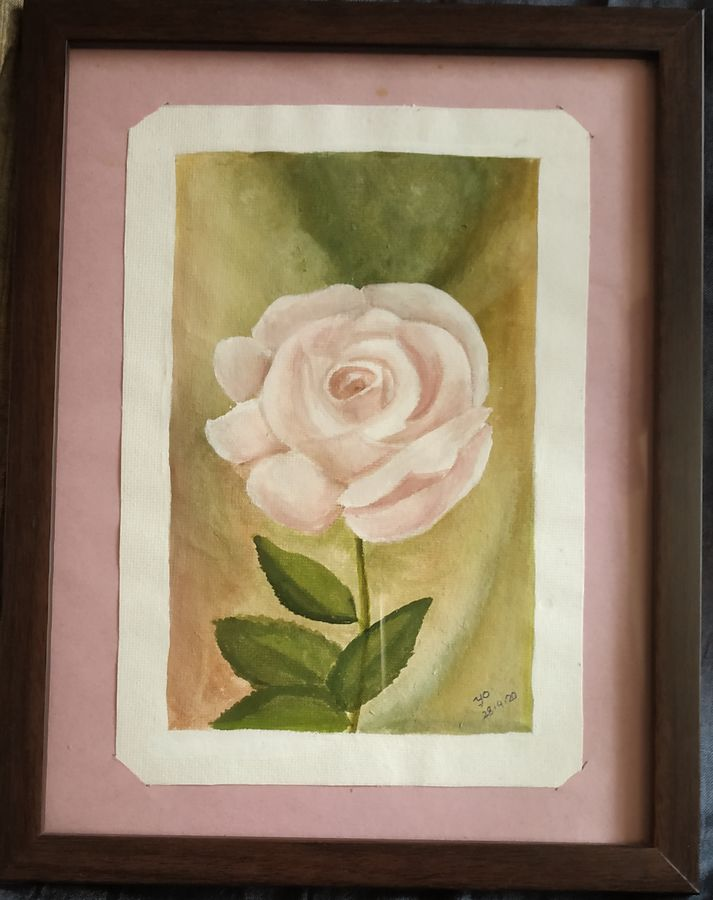 soothing pink rose, 7 x 9 inch, yogini joshi,7x9inch,thick paper,paintings,flower paintings,landscape paintings,nature paintings | scenery paintings,acrylic color,poster color,ADR21811031102