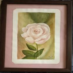 Soothing pink rose - 7x9