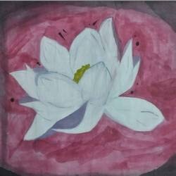 Lotus  size - 21.5x14In - 21.5x14
