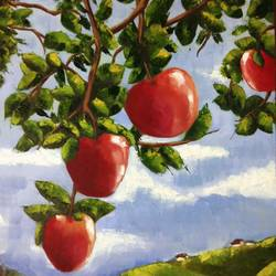 Apples size - 16x20In - 16x20