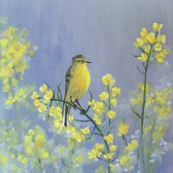 A yellow bird size - 12x14In - 12x14