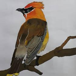 Bird 1 size - 14x22In - 14x22