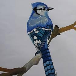 Bird 2 size - 14x22In - 14x22