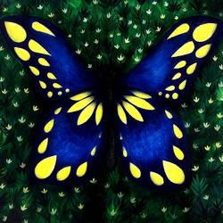Butterfly size - 22x18In - 22x18
