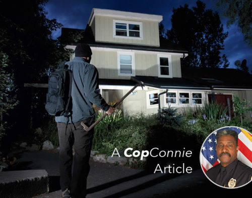Cop Connie: The Value of a Security System