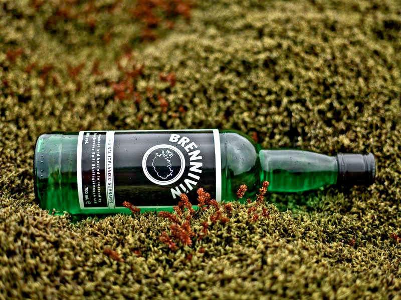 A bottle of lcelandic brennivín in the moss
