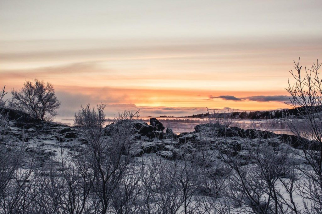 Thingvellir-winter-iceland