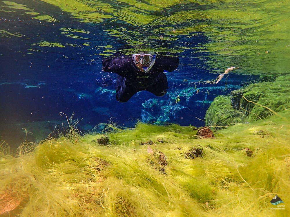 Cold water snorkeling with arctic adventures in Iceland. Silfra Fissure is locatd in Þingvellir National Park.