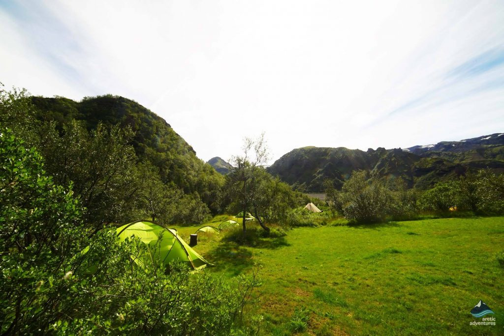 Thorsmork birch paradise