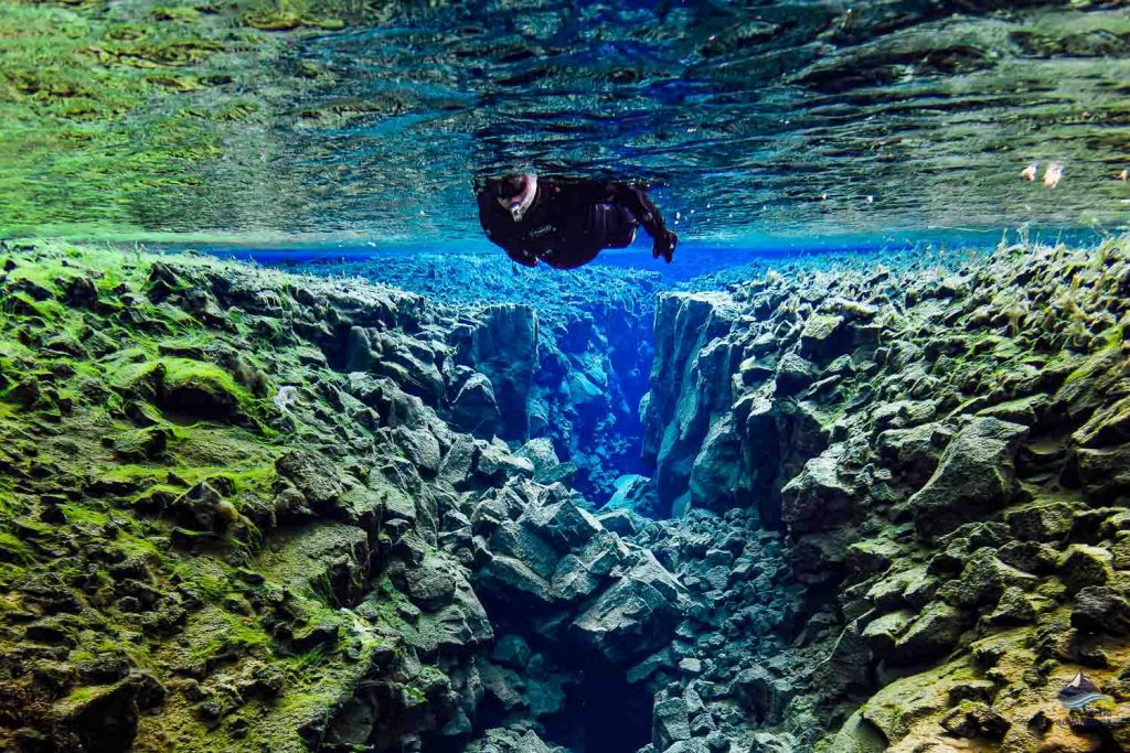 Snorkeling between two tectonic plates in Silfra in Thingvellir National Park