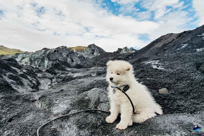 Bilbo's Glacier Adventure Tour