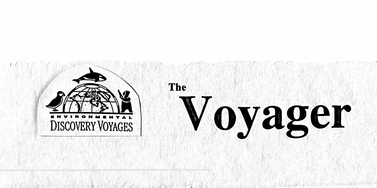 The voyager copy