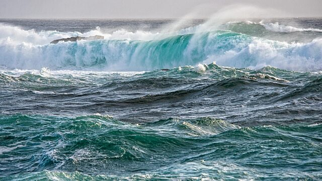 3 newfoundland waves