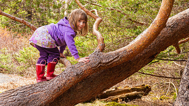 Young girl climbing tree red rainboots