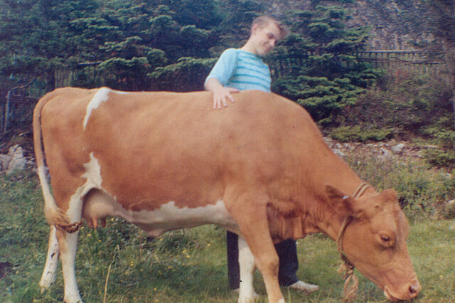 Dennis Minty youth with cow