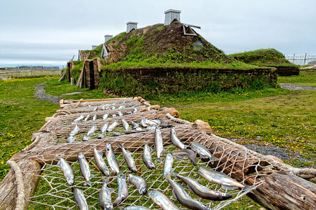 Viking building with fish drying