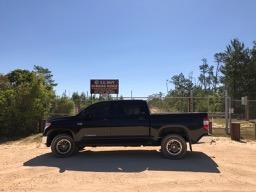 Ocala National Forest 10