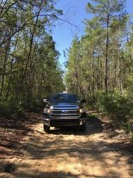 Ocala National Forest - Toyota Tundra