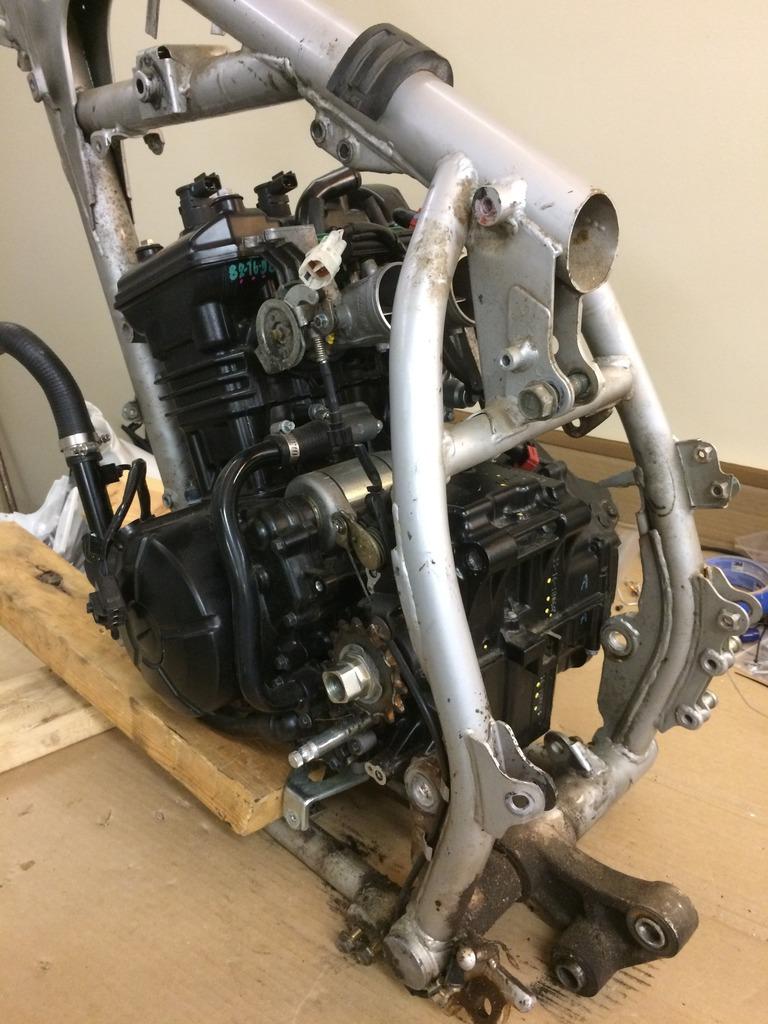 KLR650 frame, Ninja 300 engine, DRZ400SM front end   Adventure Rider
