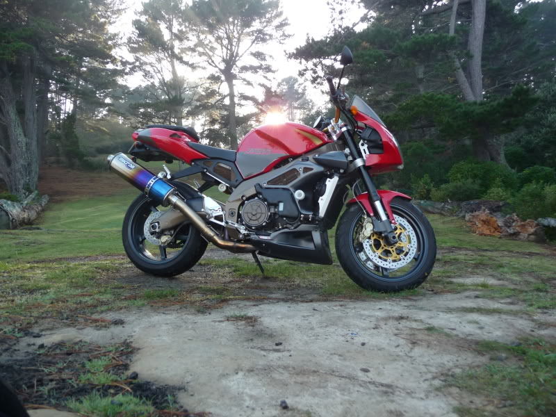 APRILIA TUONO OWNERS, others welcome | Page 4 | Adventure Rider
