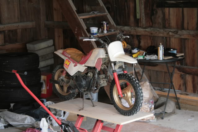 That's Right, This Thread is About a PW50 | Adventure Rider