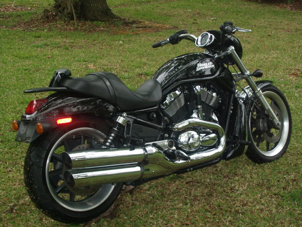 Vrod Muscle Anyone Have One Page 2 Adventure Rider