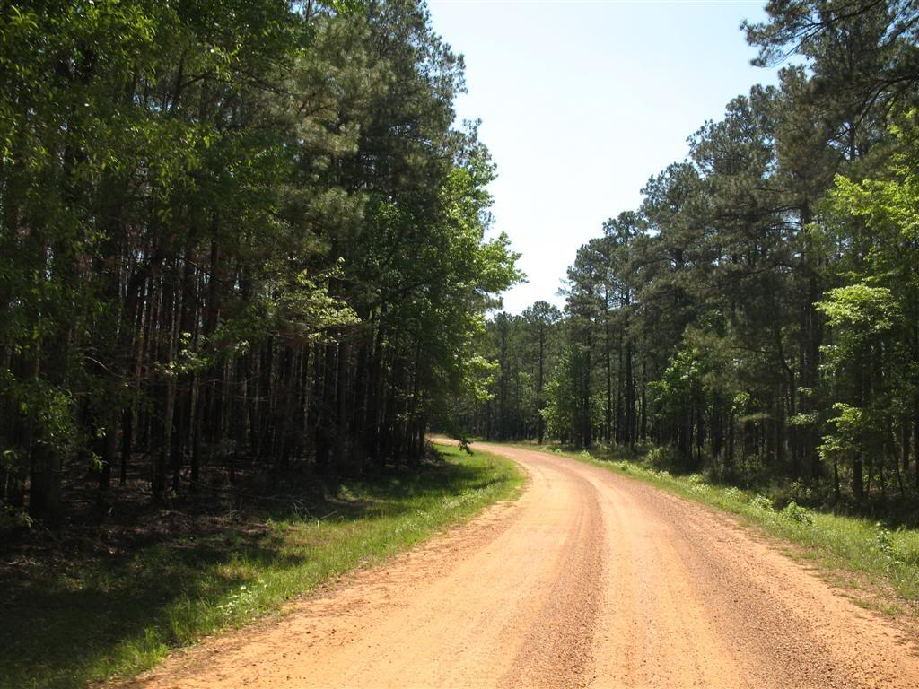 Kisatchie...The secret is out. | Adventure Rider on