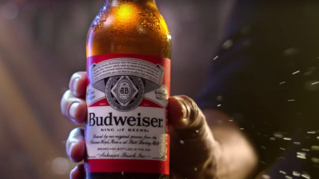 a budweiser beer bottle