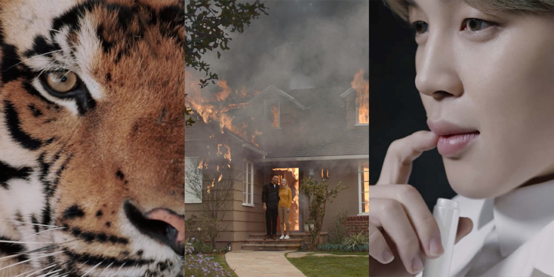 Combined images of animals, fires and people