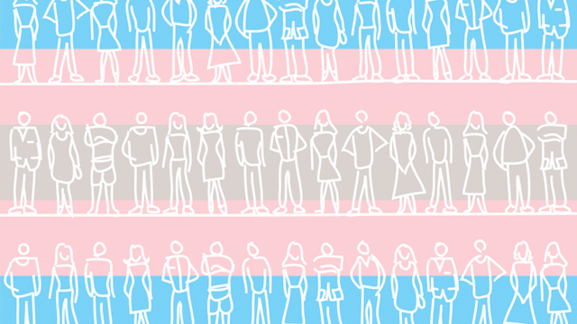 Background featuring the colors of the transgender flag with stick figures drawings of people on top of it