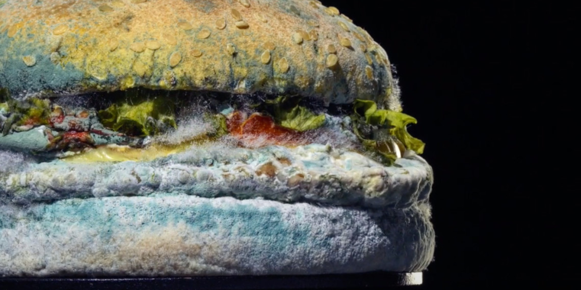 Photo of the Moldy Whopper