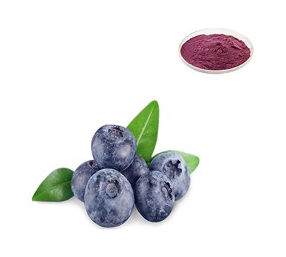 蓝莓提取物