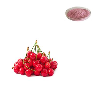 organic-cherry-juice-powder-freeze-dried