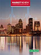 Market Review Lou 2013 cover
