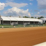 Club Lawn Chalets will offer seating and dining options for approximately 500 guests daily for Prelude to the Cup and the Breeders' Cup.